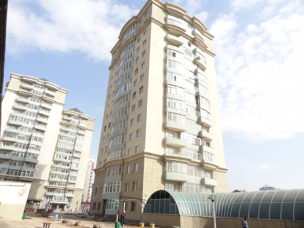 One-bedroom apartment in Golomt Hothon
